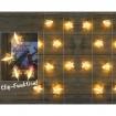 LED Klammerkette aus Acryl mit 10er LED